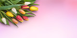 A bunch of tulips isolated against a pink background.