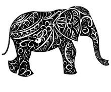 Stylized Fantasy Patterned Elephant. Hand Drawn Illustration