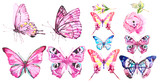 Fototapeta Buterfly - beautiful color butterflies, set, watercolor,  isolated  on a white