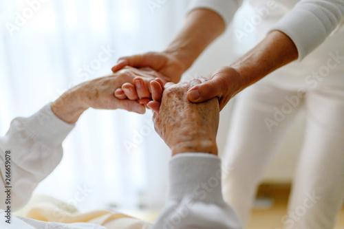 Fototapeta Rentnerin wird bei den Händen gehalten, Fürsorge im Alter obraz