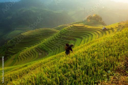 Foto auf Gartenposter Reisfelder Vietnamese Farmer working on the terrace rice field at Mu Cang Chai Vietnam.