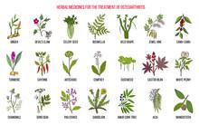 Best Herbal Remedies For Osteoarthritis
