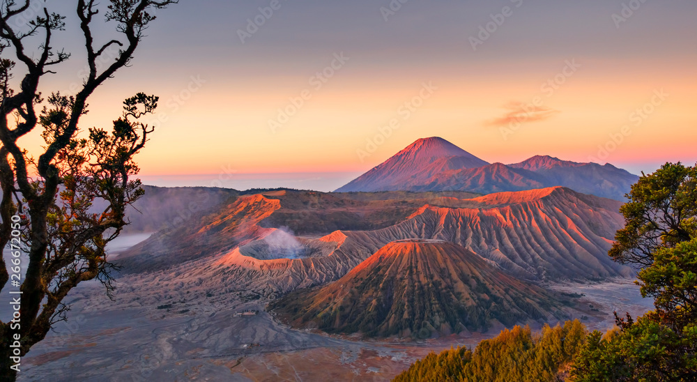 Fototapety, obrazy: Sunrise at Mount Bromo volcano, the magnificent view of Mt. Bromo located in Bromo Tengger Semeru National Park, East Java, Indonesia