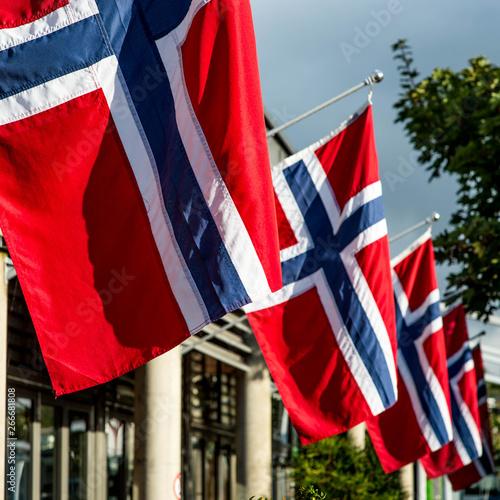fototapeta na ścianę A Line Of Norwegian National Flags