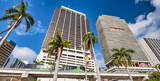 Buildings and monorail of Downtown Miami with palms on a sunny day - 266686227