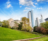 Frankfurt, Germany. Beautiful park with modern city skyline on a sunny day - 266700483