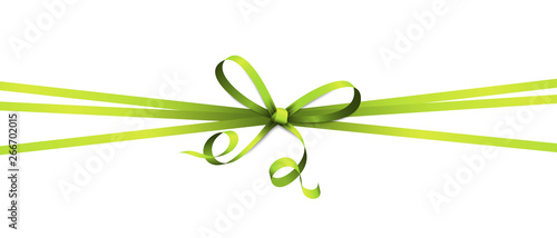 Fotomural green colored ribbon bow