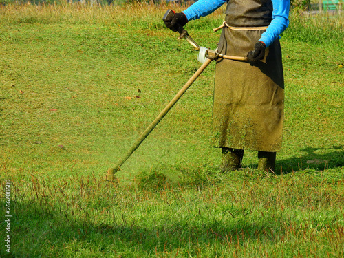 Photo Stands Roe worker mowing grass on the lawn in garden