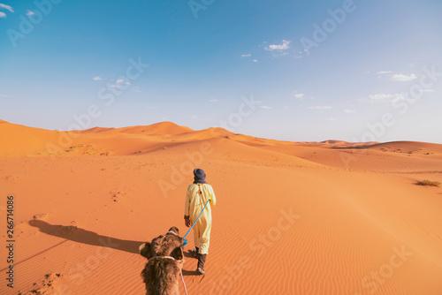 Riding a Dromedary Camel Guided by a Berber Man in Sahara Desert Canvas-taulu