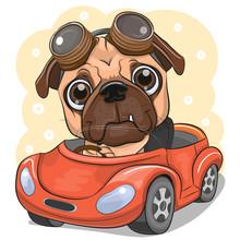 Cartoon Pug Dog Boy In Glasses...