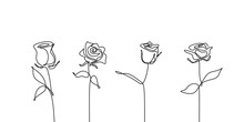 Continuous Line Drawing Of Rose Flower Set Collections Minimalism Design