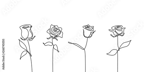 Fototapeta Continuous line drawing of rose flower set collections minimalism design obraz