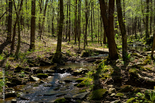 Cane Creek Nature Preserve