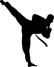 Taekwondo 1 Isolated Vector Si...