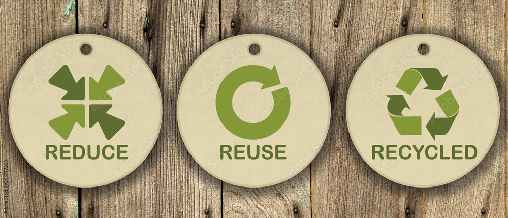 Fototapeta Set di icone ecologiche