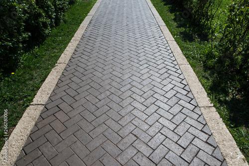 Fotografia Paving slabs in the green garden