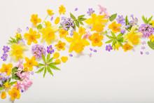 Spring Flowers On White Backgr...