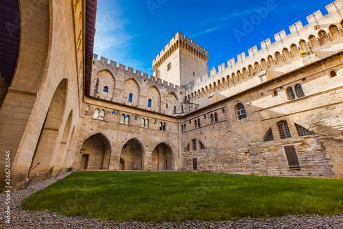 Fototapeta Palais des Papes in Avignon, France