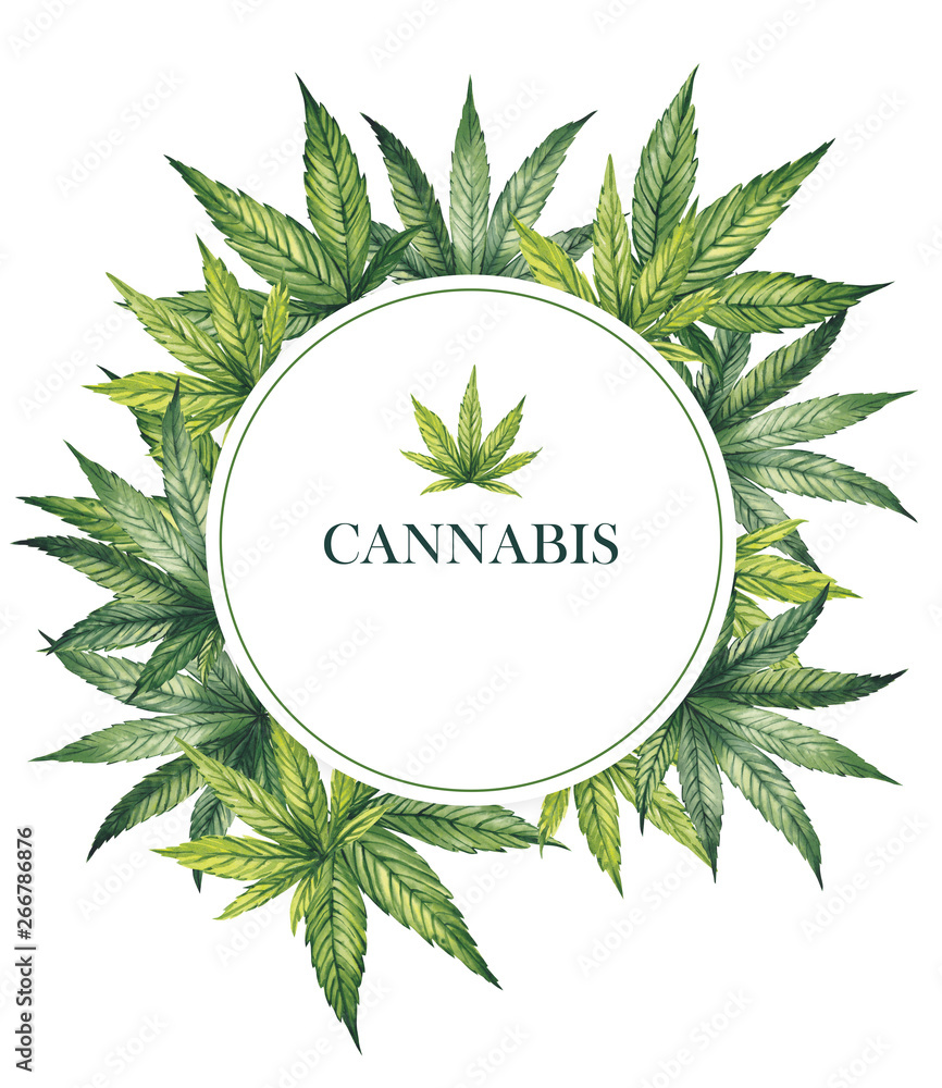 Fototapety, obrazy:  Watercolor illustration. Round frame with cannabis leaves.