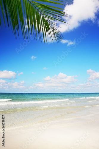 Canvas Prints Countryside Tropical beach background with palm tree and empty wooden, Summer.
