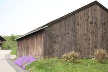 Wood House And Purple Flowers