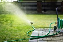 Lawn Sprinkler Watering Green Grass