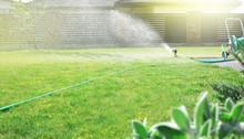 Lawn Sprinkler Watering Green ...