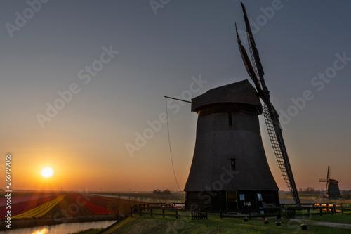 Fototapeta Windmills in Schermerhorn, The Netherlands, at sunset obraz na płótnie