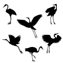 Vector Hand Drawn Black Crane ...