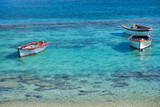 Beautiful small boats in shallow waters - 266817226