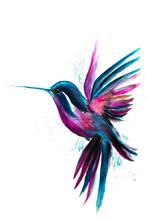 Watercolor Hummingbird Flying ...