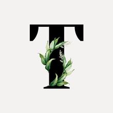 Botanical Font Letter T