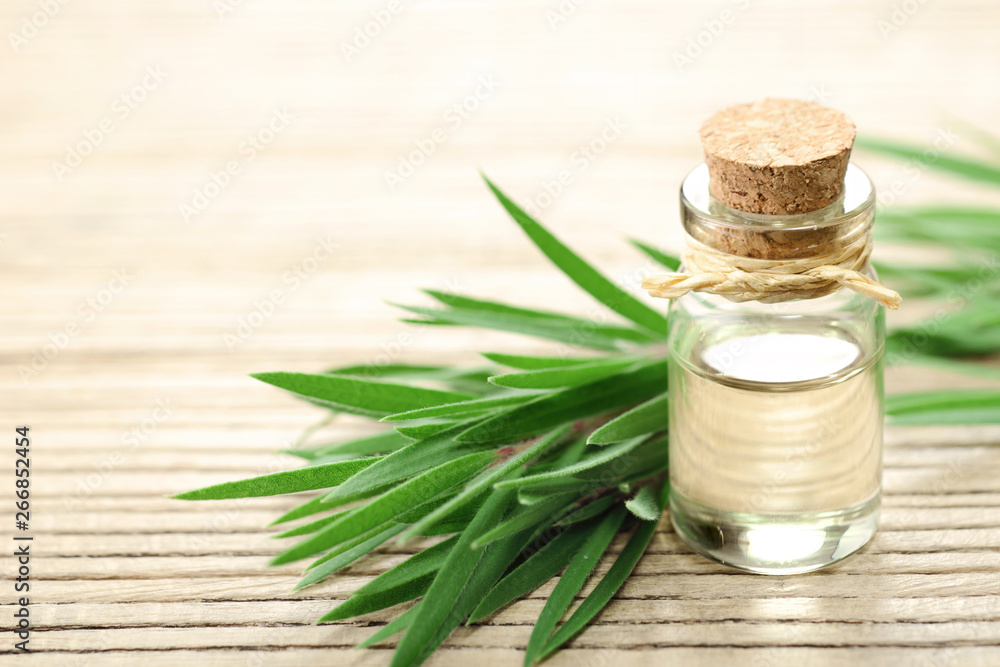 Fototapety, obrazy: Tea tree essential oil in the galss bottle, on the wooden board