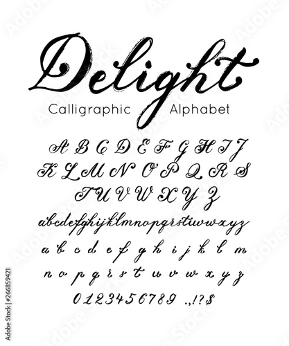Vector elegant font and alphabet. Set of cursive letters ...