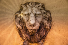 Stone Lion On A Fountain In Fiesole
