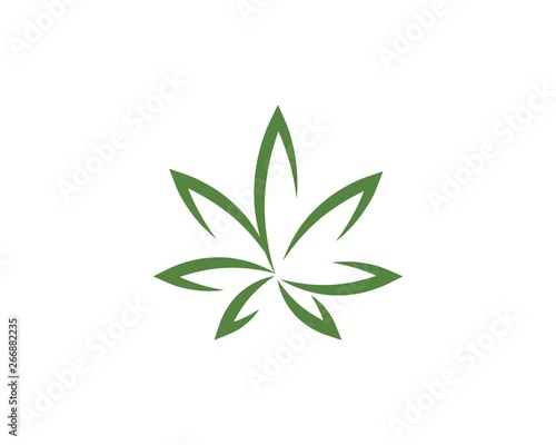 Canabis leaf vector illustration