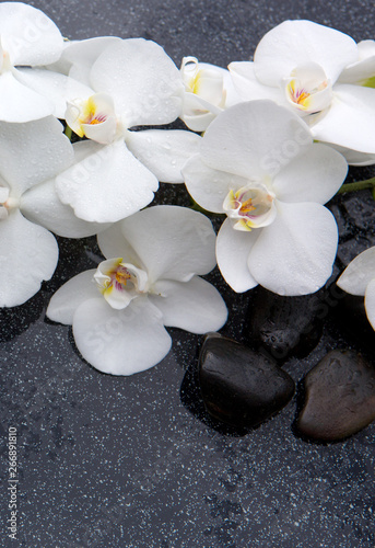 Okleiny na drzwi kamienie  still-life-with-spa-stones-and-white-orchid