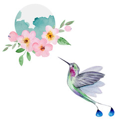 Fototapeta Do salonu Watercolor Hummingbird Flying Around the Cherry Blossoms Flowers.