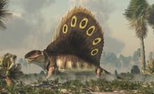 A Brown Dimetrodon, A Prehistoric Sail-backed Creature That Predates The Dinosaurs, Stands In A Permian Era Wetland Bearing Its Sharp Teeth.