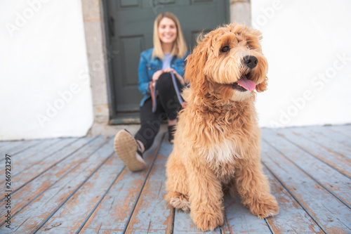 Fotografia  Labradoodle Dog and woman outside on balcony