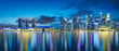Panorama view of Singapore city skyline at night . Travel asia concept .