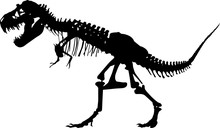 Fossils 6 Isolated Vector Silh...