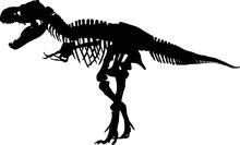 Fossils 7 Isolated Vector Silhouette