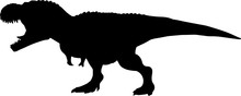 Tyrannosaurus Rex 8 Isolated V...