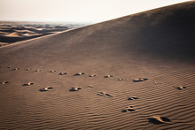 Footprints In The Dunes At Great Sand Dunes National Park, Colorado