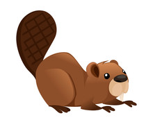 Cute Brown Beaver Sitting. Cartoon Character Design. North American Beaver Castor Canadensis. Rodentia Mammals. Happy Animal. Flat Vector Illustration Isolated On White Background. Front View