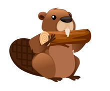 Cute Brown Beaver Eating Wooden Stick. Cartoon Character Design. North American Beaver Castor Canadensis. Rodentia Mammals. Happy Animal. Flat Vector Illustration Isolated On White Background