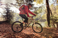 Man Riding Mountain Bike On Forest Track