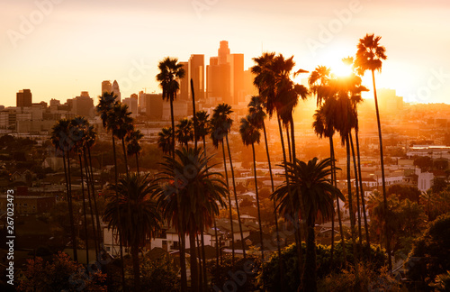 Poster Palmier Beautiful sunset through the palm trees, Los Angeles, California.