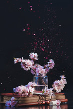 Spring Cherry Blossom In A Glass Jar On A Dark Background With Pink Sparkle. Creative Flower Photography With Copy Space.